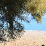 Soros Beach Antiparos